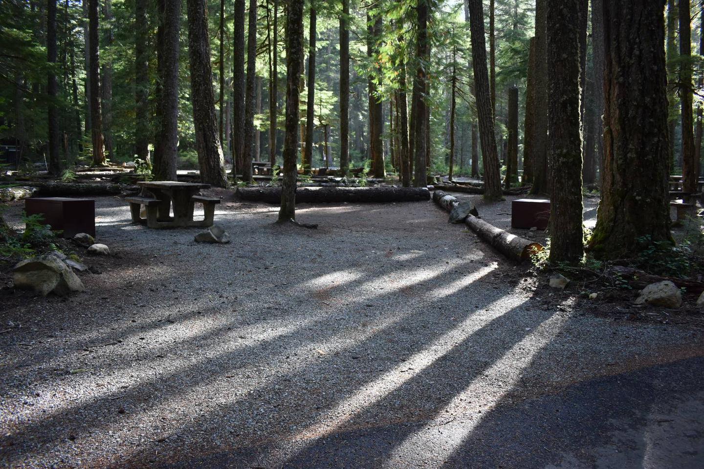 Ohanapecosh Campground - Site D007 Parking Area