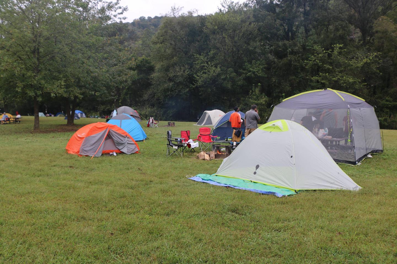 Steel Creek Camp Site #5 (photo 5)Steel Creek Camp Site #5