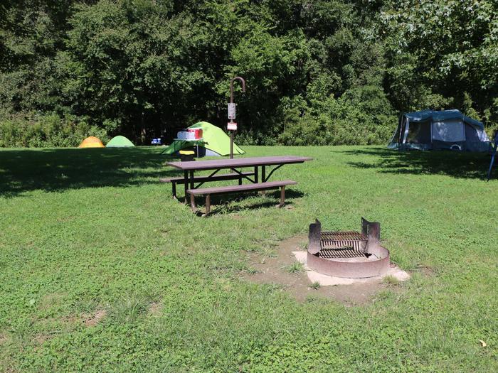 Steel Creek Camp Site #7