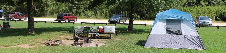 Site #9Steel Creek Camp Site #9-2
