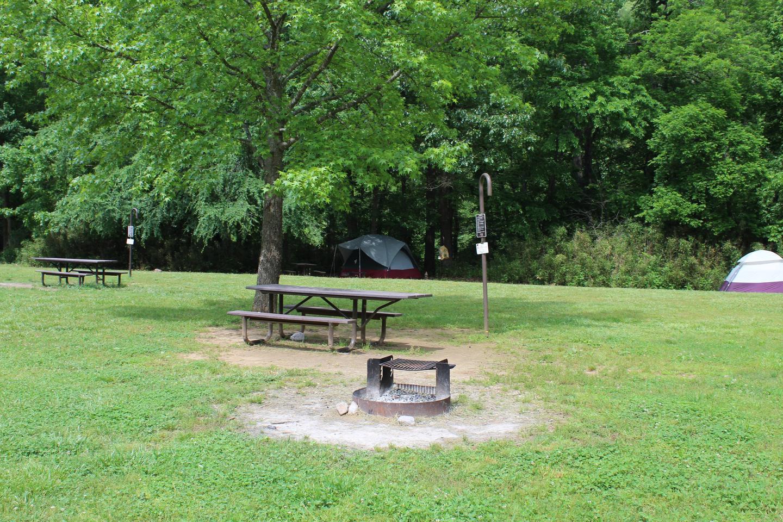 Steel Creek Camp Site #11-2