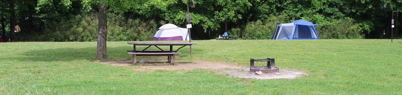 Steel Creek Camp Site #11