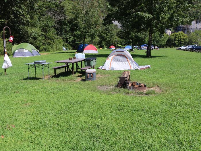 Steel Creel Camp Site #20