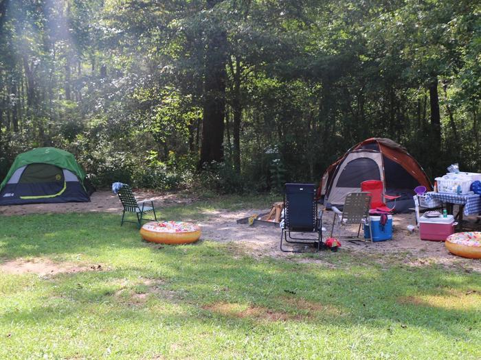 Steel Creek Camp Site #26