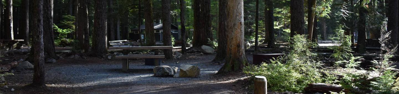 Ohanapecosh Campground - Site D009