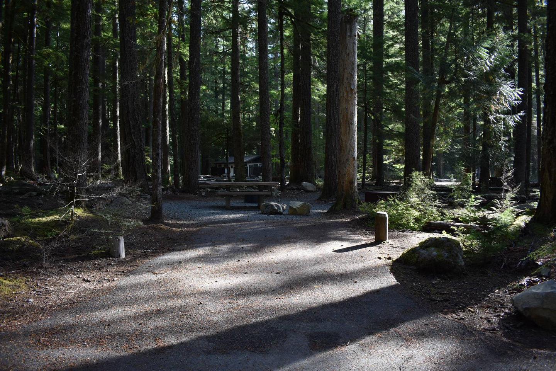 Ohanapecosh Campground - Site D009 Parking Area