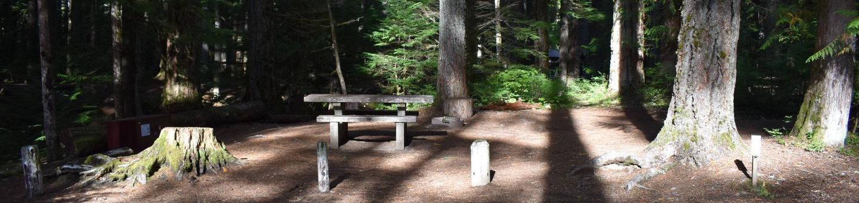 Ohanapecosh Campground - Site D010