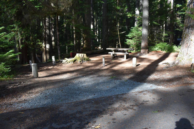 Ohanapecosh Campground - Site D010 Parking Area