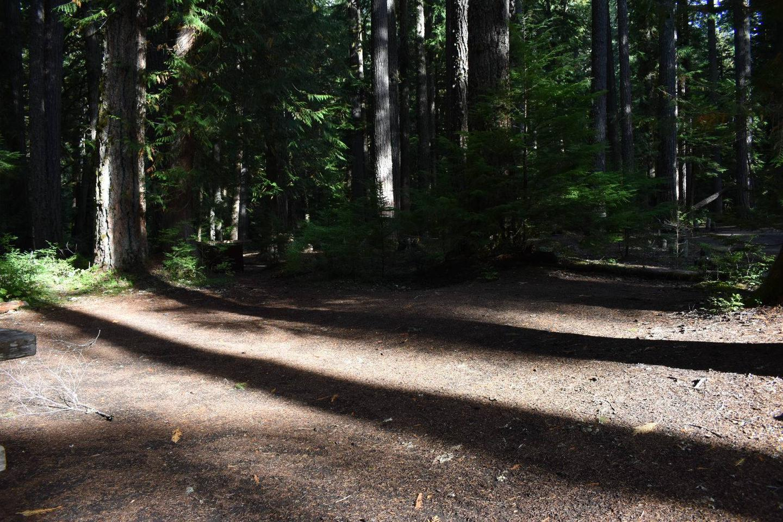 Ohanapecosh Campground - Site D010 Tent Space