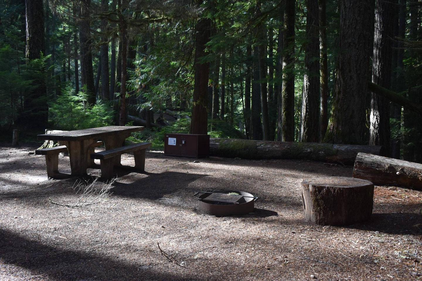 Ohanapecosh Campground - Site D010 AmenitiesCampers are provided with a picnic table, food storage box, and fire pit.