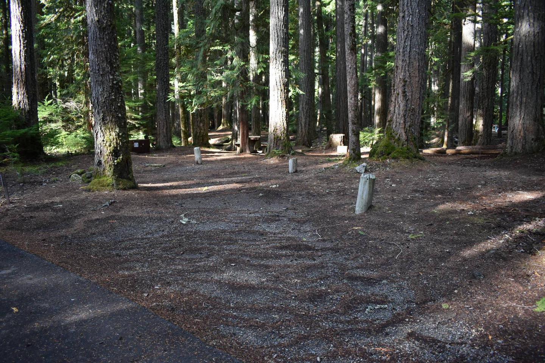 Ohanapecosh Campground - Site D011 Parking Area