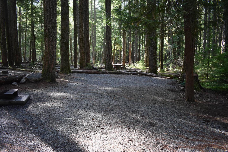 Ohanapecosh Campground - Site D012 Tent Space