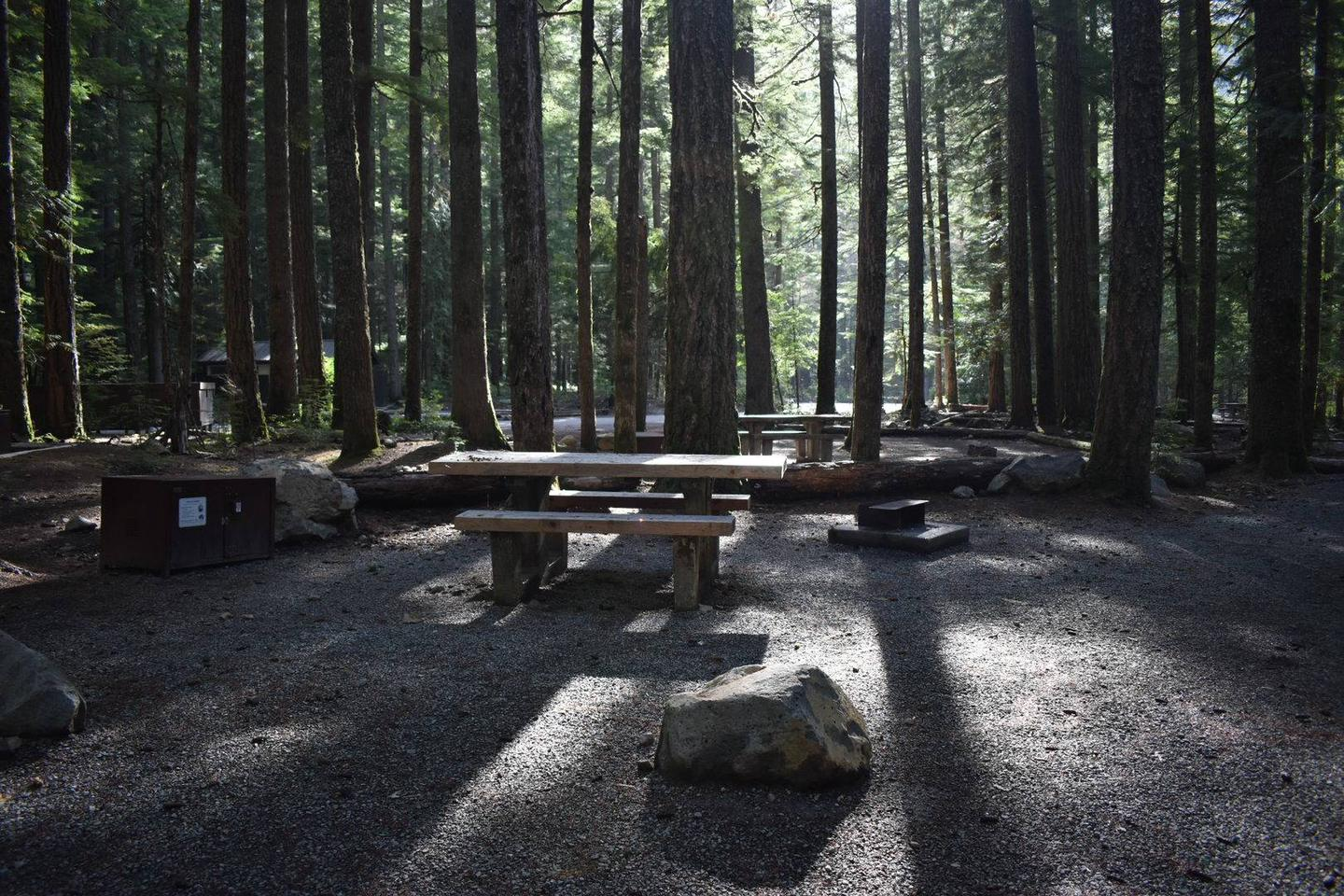 Ohanapecosh Campground - Site D012 AmenitiesCampers are provided with a picnic table, food storage box, and a fire pit.