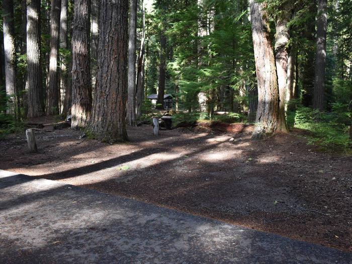 Ohanapecosh Campground - Site D013
