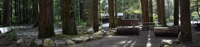 Ohanapecosh Campground - Site D014