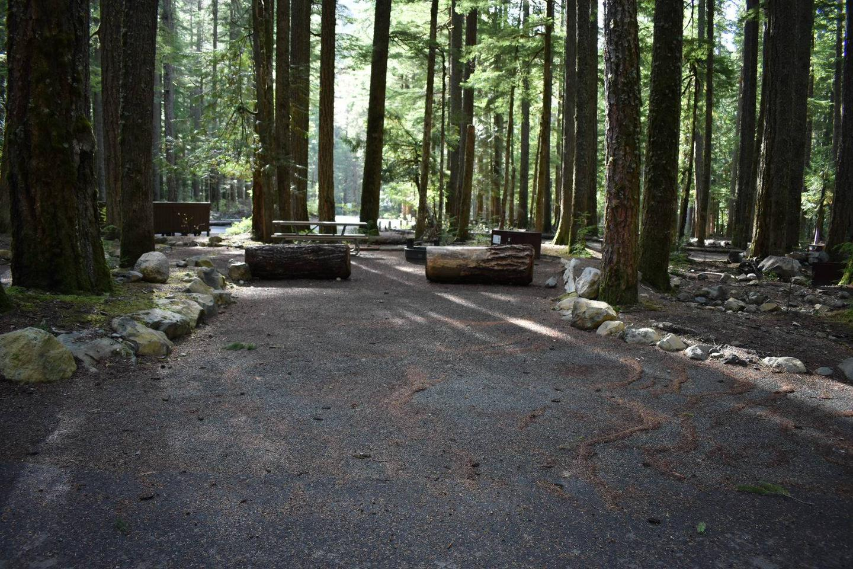 Ohanapecosh Campground - Site D014 Parking Area