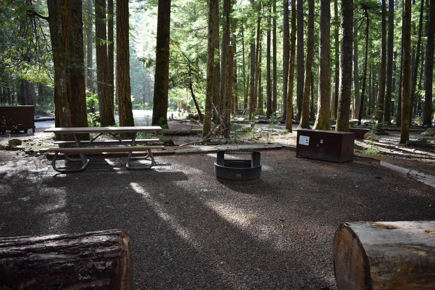 Ohanapecosh Campground - Site D014 AmenitiesCampers are provided with a picnic table, food storage box, and fire pit.