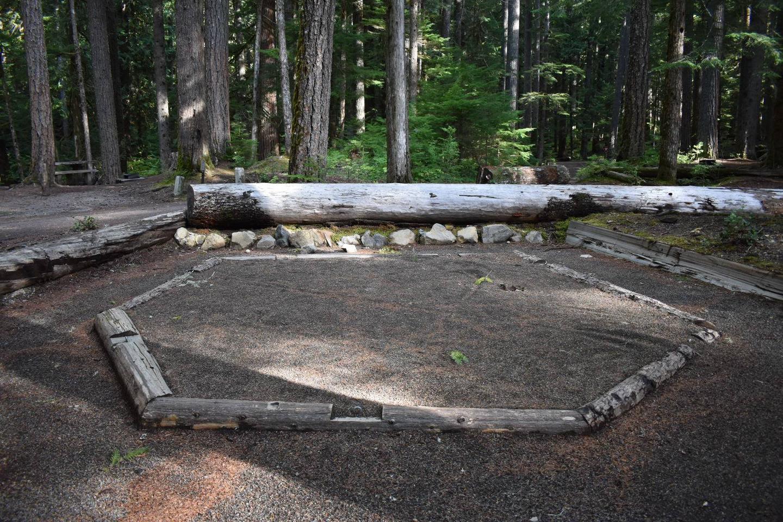 Ohanapecosh Campground - Site D014 Tent Pad