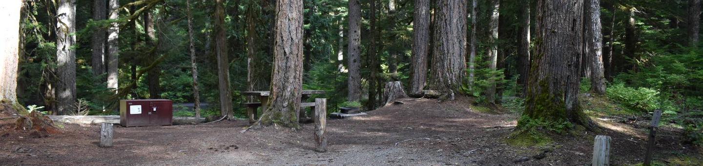 Ohanapecosh Campground - Site D015