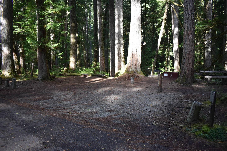 Ohanapecosh Campground - Site D015 Parking Area