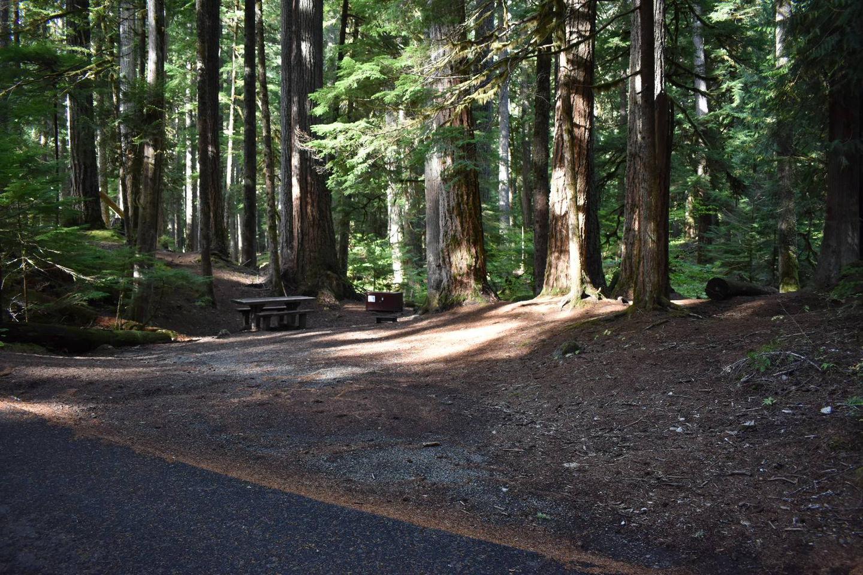 Ohanapecosh Campground - Site D016 Parking Area