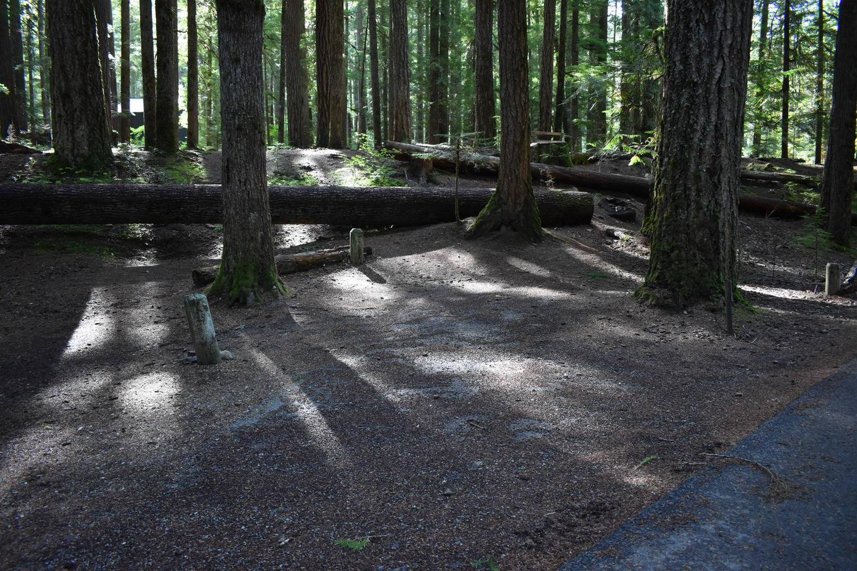 Ohanapecosh Campground - Site D017 Parking Area