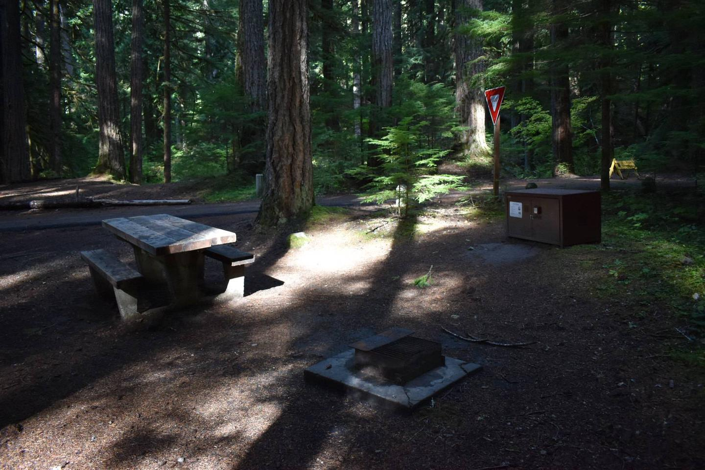 Ohanapecosh Campground - Site D017 AmenitiesCampers are provided with a picnic table, food storage box, and fire pit.