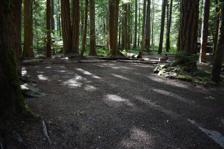 Ohanapecosh Campground - Site D020 Parking Area