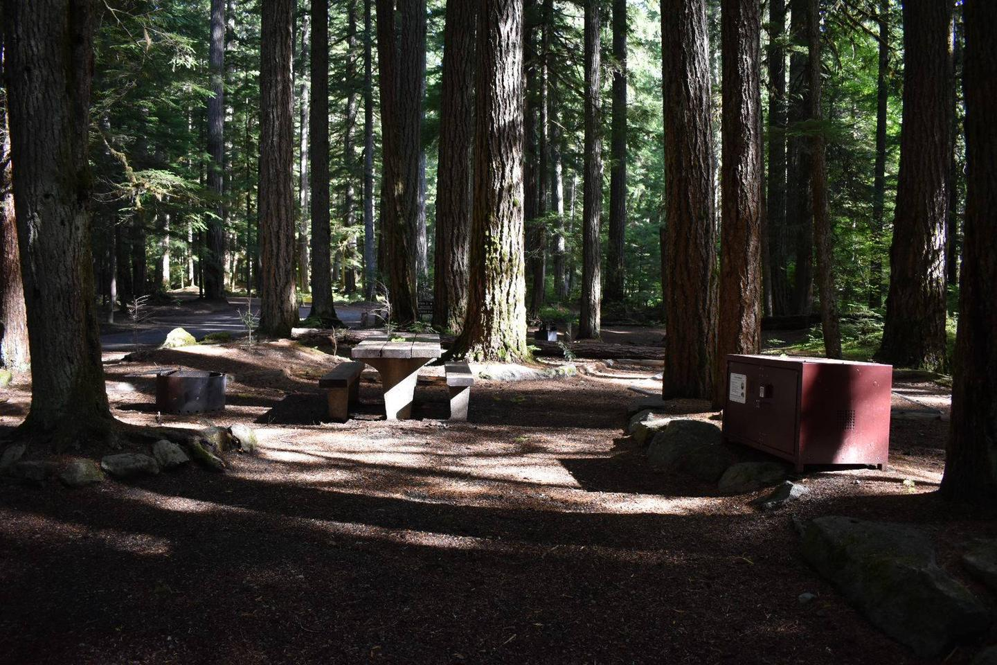 Ohanapecosh Campground - Site D020 AmenitiesCampers are provided with a picnic table, food storage box, and fire pit.