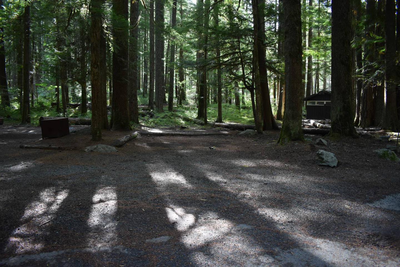 Ohanapecosh Campground - Site D021 Parking Area