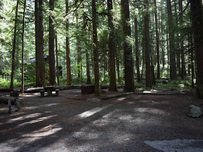 Ohanapecosh Campground - Site D021