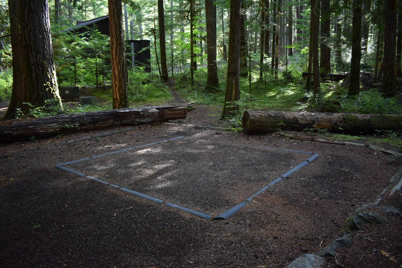 Ohanapecosh Campground - Site D021 Tent Space