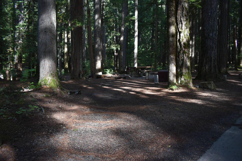 Ohanapecosh Campground - Site D022 Parking Area