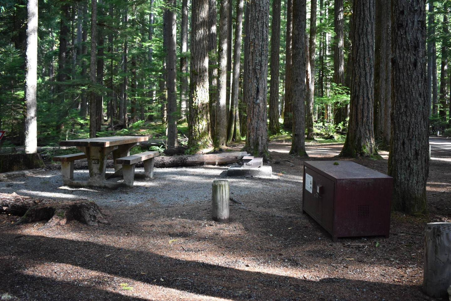 Ohanapecosh Campground - Site D022 AmenitiesCampers are provided with a picnic table, food storage box, and fire pit.