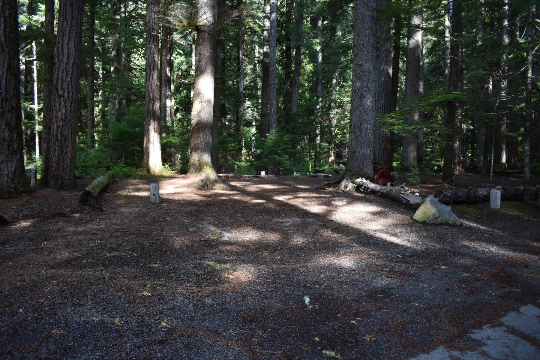 Ohanapecosh Campground - Site D023 Parking Area