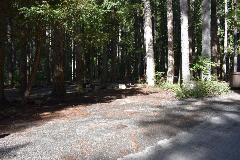 Ohanapecosh Campground - Site D024 Parking Area