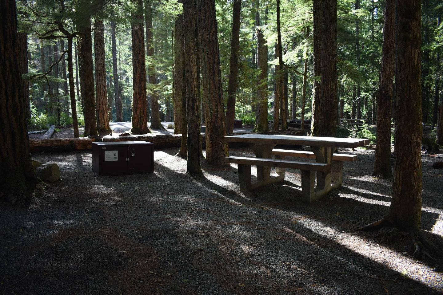 Ohanapecosh Campground - Site D025 AmenitiesCampers are provided with a picnic table, food storage box, and fire pit.