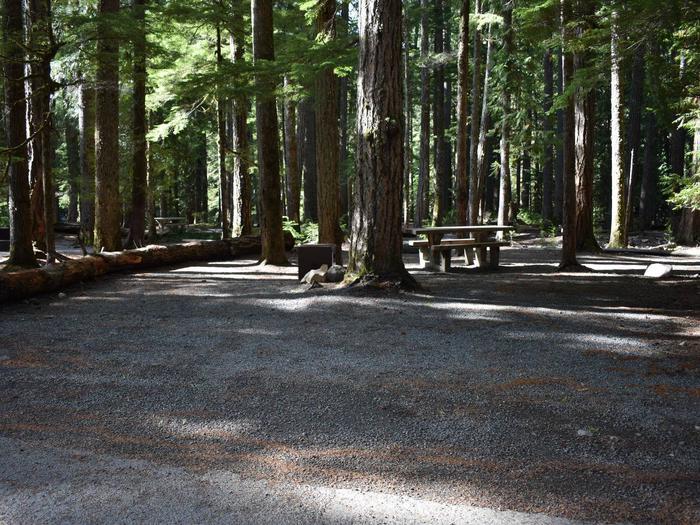 Ohanapecosh Campground - Site D025