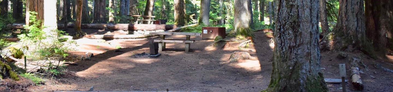 Ohanapecosh Campground - Site E001