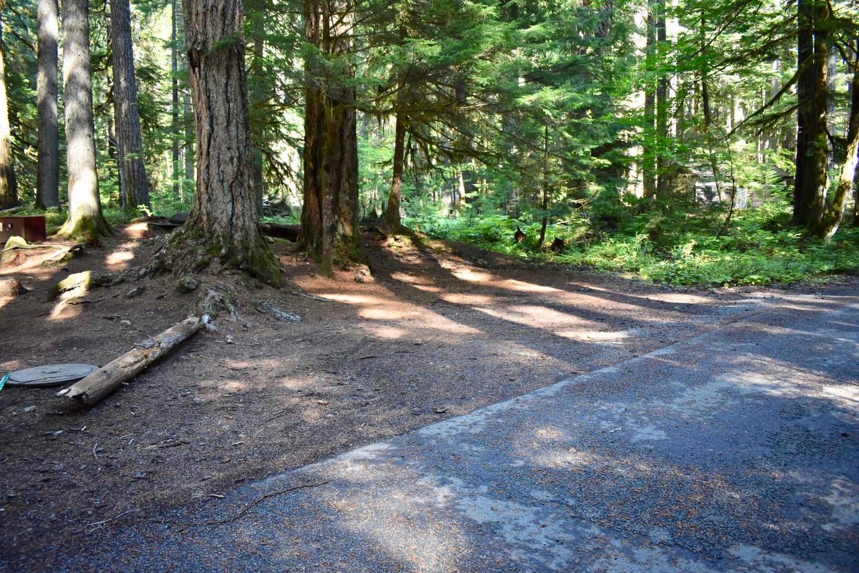 Ohanapecosh Campground - Site E001 Parking Area