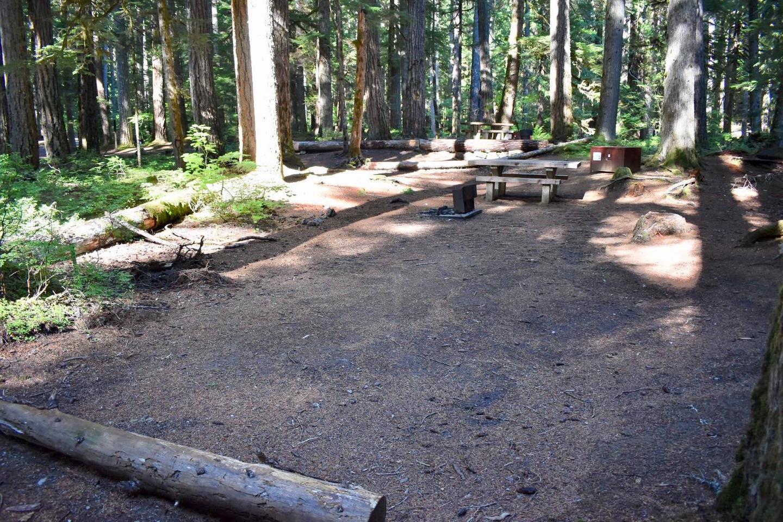 Ohanapecosh Campground - Site E001 Tent Space
