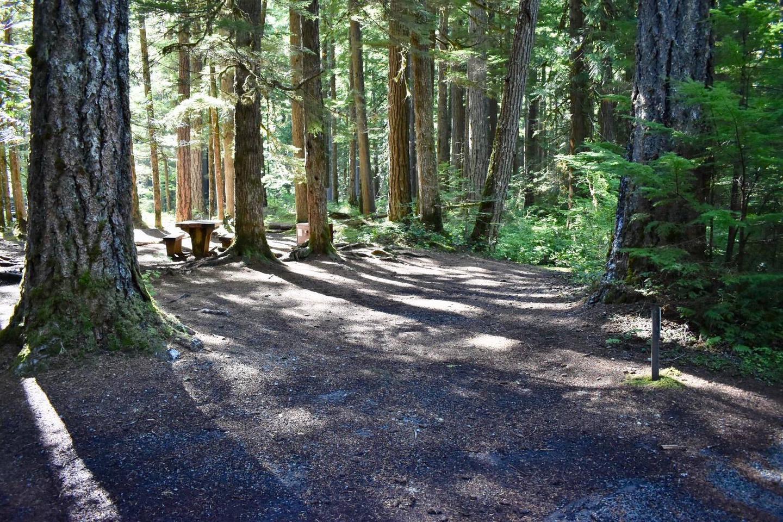 Ohanapecosh Campground - Site E002 Parking Area