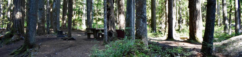 Ohanapecosh Campground - Site E003