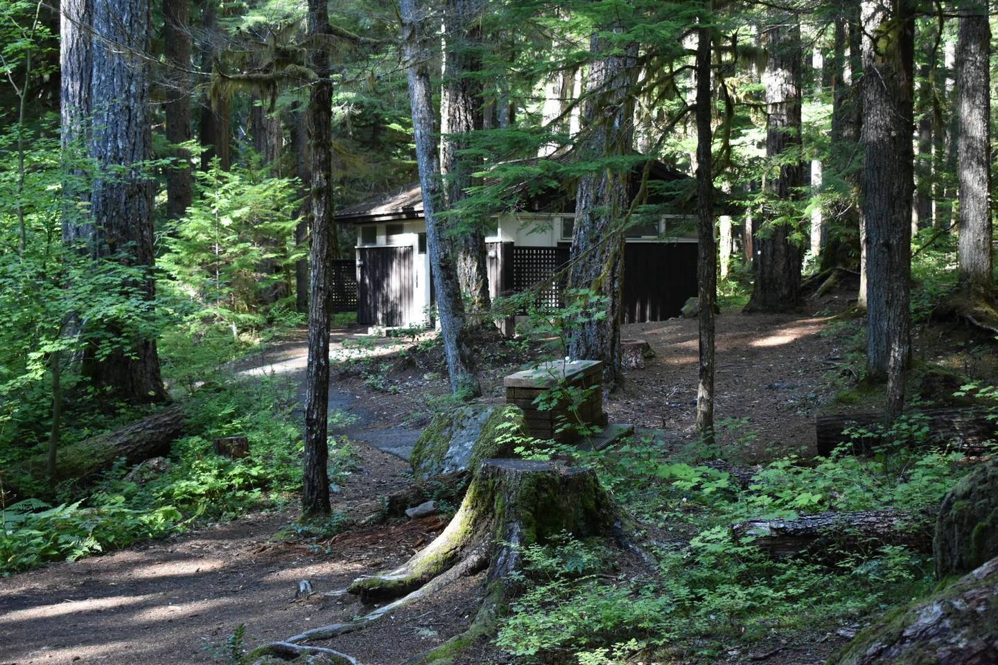 A short path behind the campsite leads to the restroom facilities.