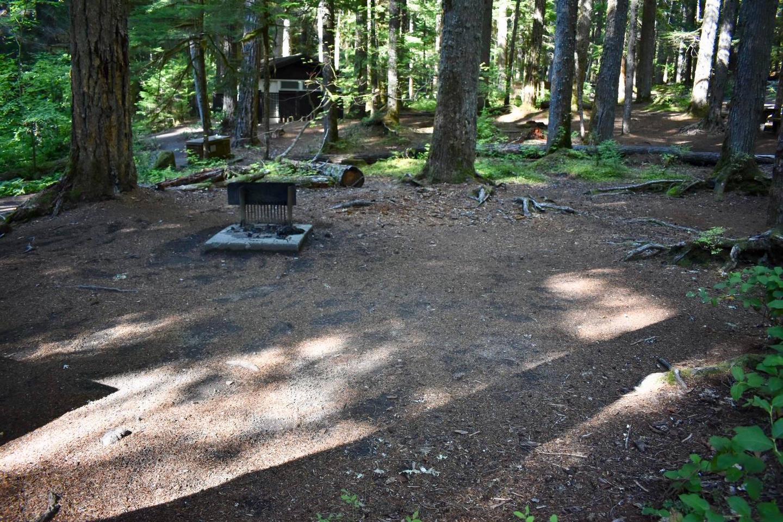 Ohanapecosh Campground - Site E003 Tent Space