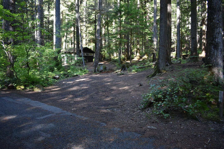 Ohanapecosh Campground - Site E003 Parking Area