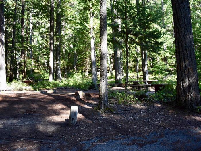 Ohanapecosh Campground - Site E004