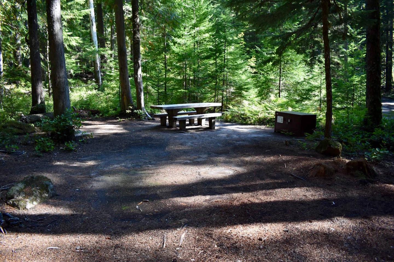 Ohanapecosh Campground - Site E004 Tent Space