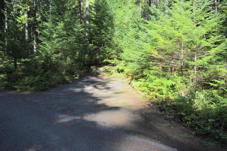 Ohanapecosh Campground - Site E004 Parking Area