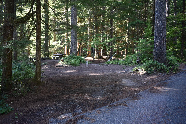 Ohanapecosh Campground - Site E005 Parking Area